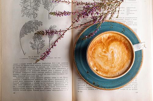 coffee-2151200_500.jpg